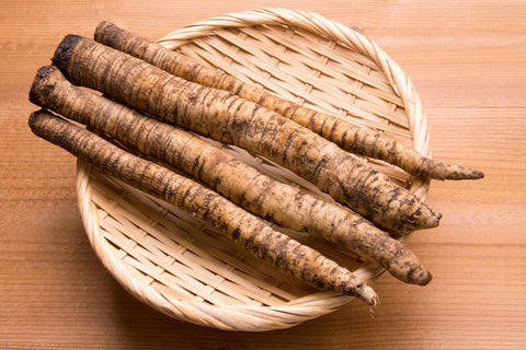 Burdock Root: A Living Picture of Transformation