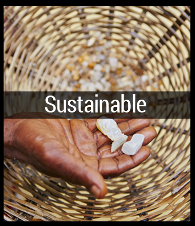 Sumana Sustainable Socially Conscious Jewelry