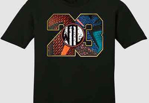 "EXCLUSIVE TEE SHIRT to match the NIKE LEBRON 12 WHAT THE / WTL!-""WHAT THE 23"""