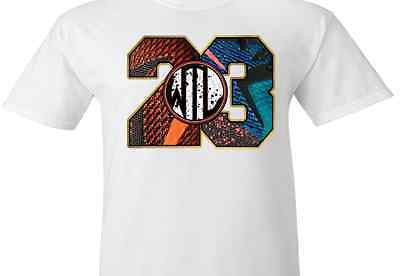 newest collection e4f96 36f1f EXCLUSIVE TEE SHIRT to match the NIKE LEBRON 12 WHAT THE / WTL!-