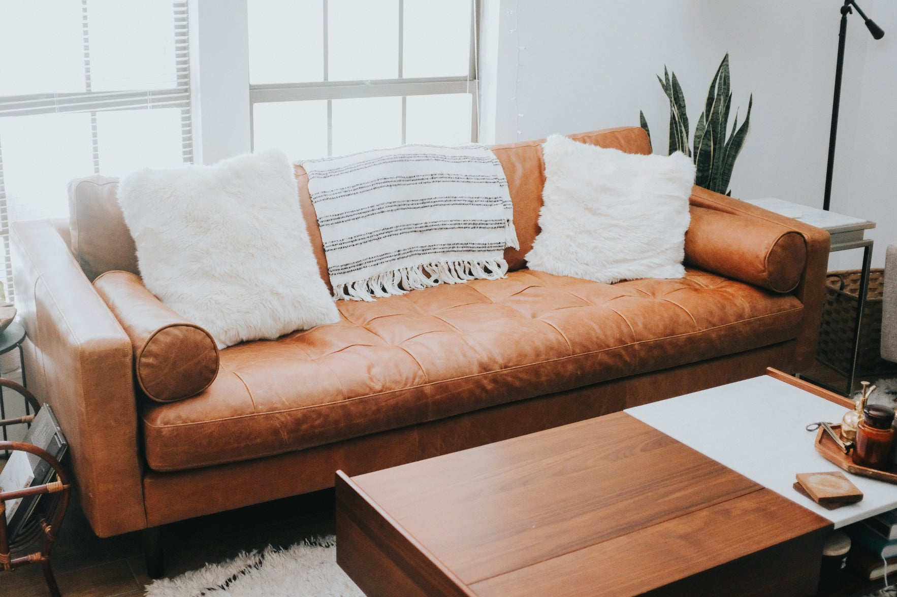 Read this before buying a leather sofa! – Poly & Bark