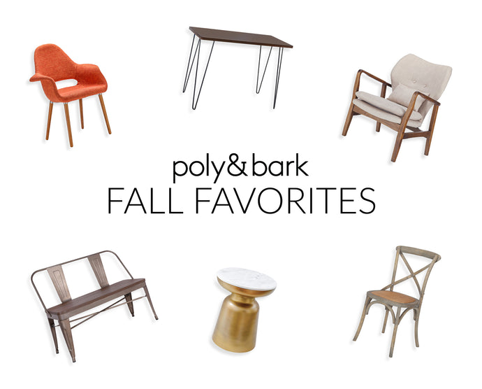 🍁 Fall Furniture Favorites!