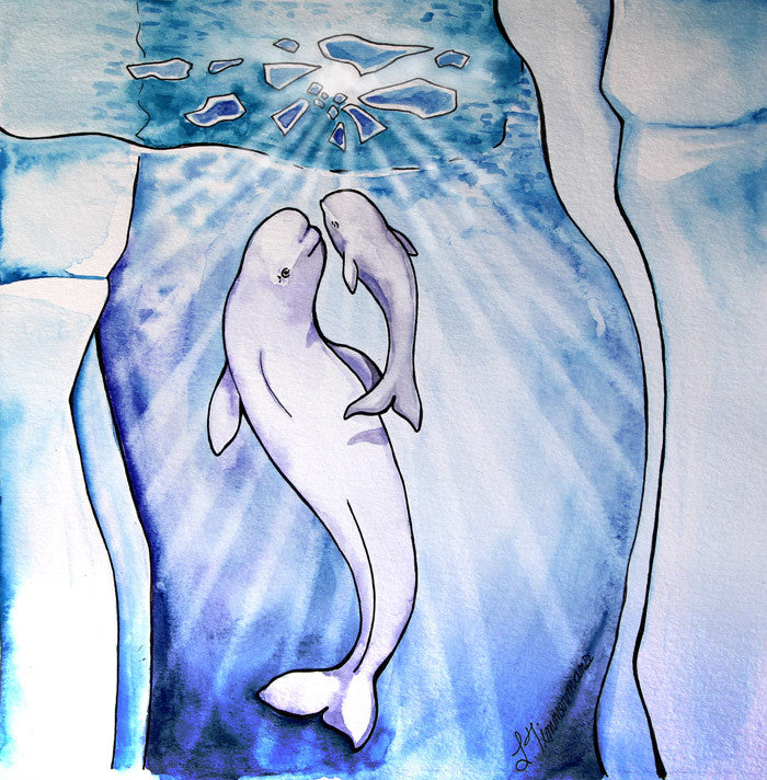 Adorable belugas 12-pack — art by Laura Timmermans