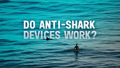 Do Anti-Shark Devices Work?