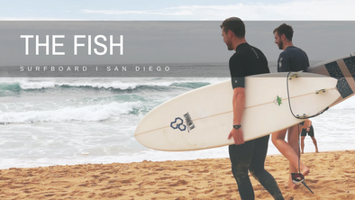 Beginner Surfboard: What about a Fish?