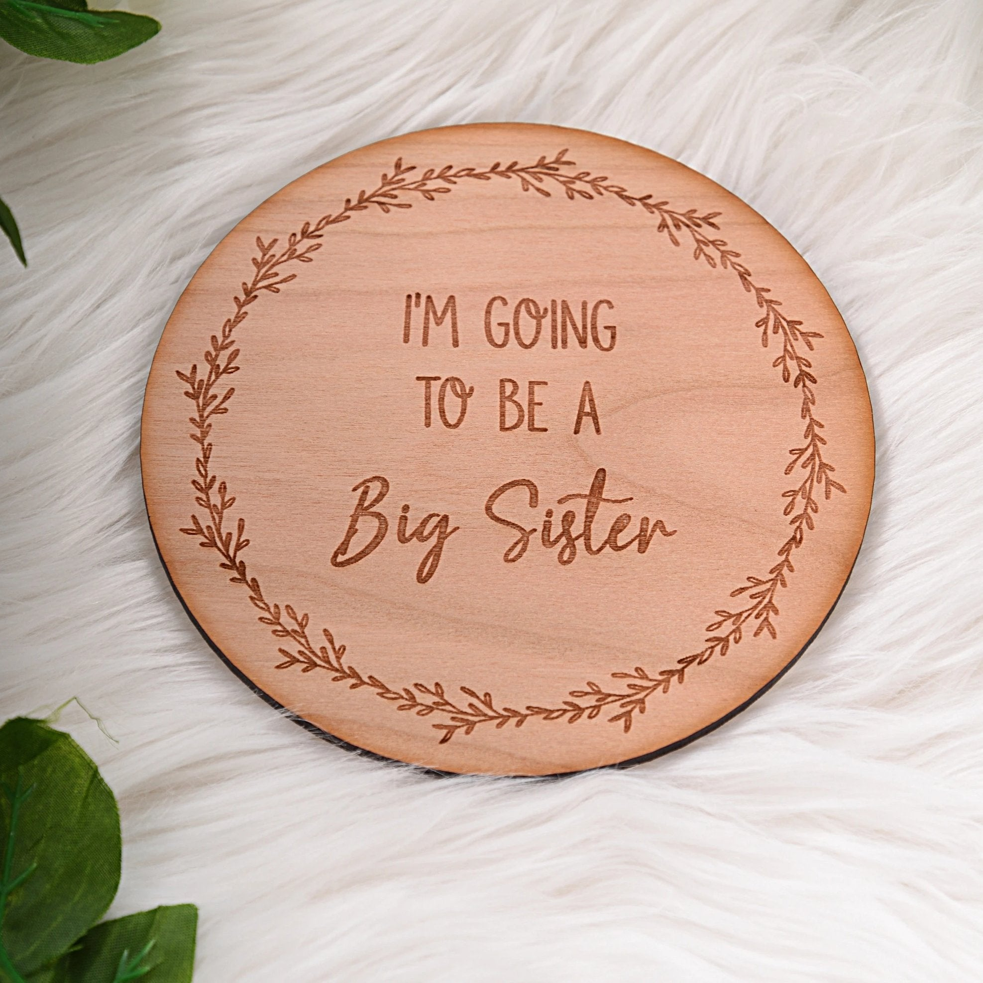 Big Brother/Sister Announcement Milestone Disc