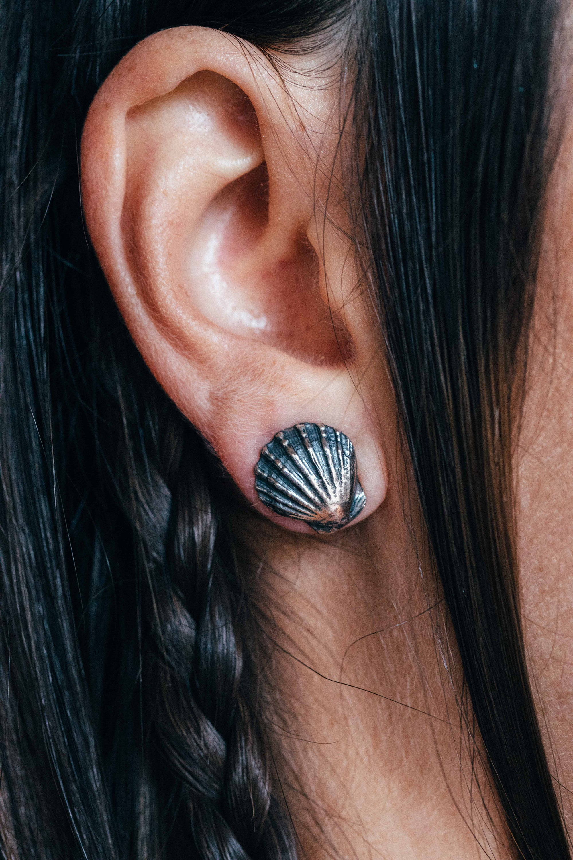 Clam shell earrings ~ (blackened silver)
