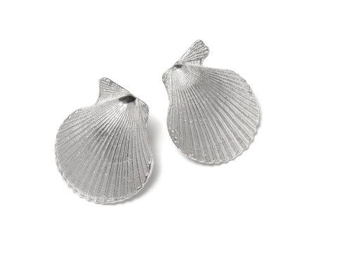 Pecten Nobilis Shell Earrings ~ (Polished silver)