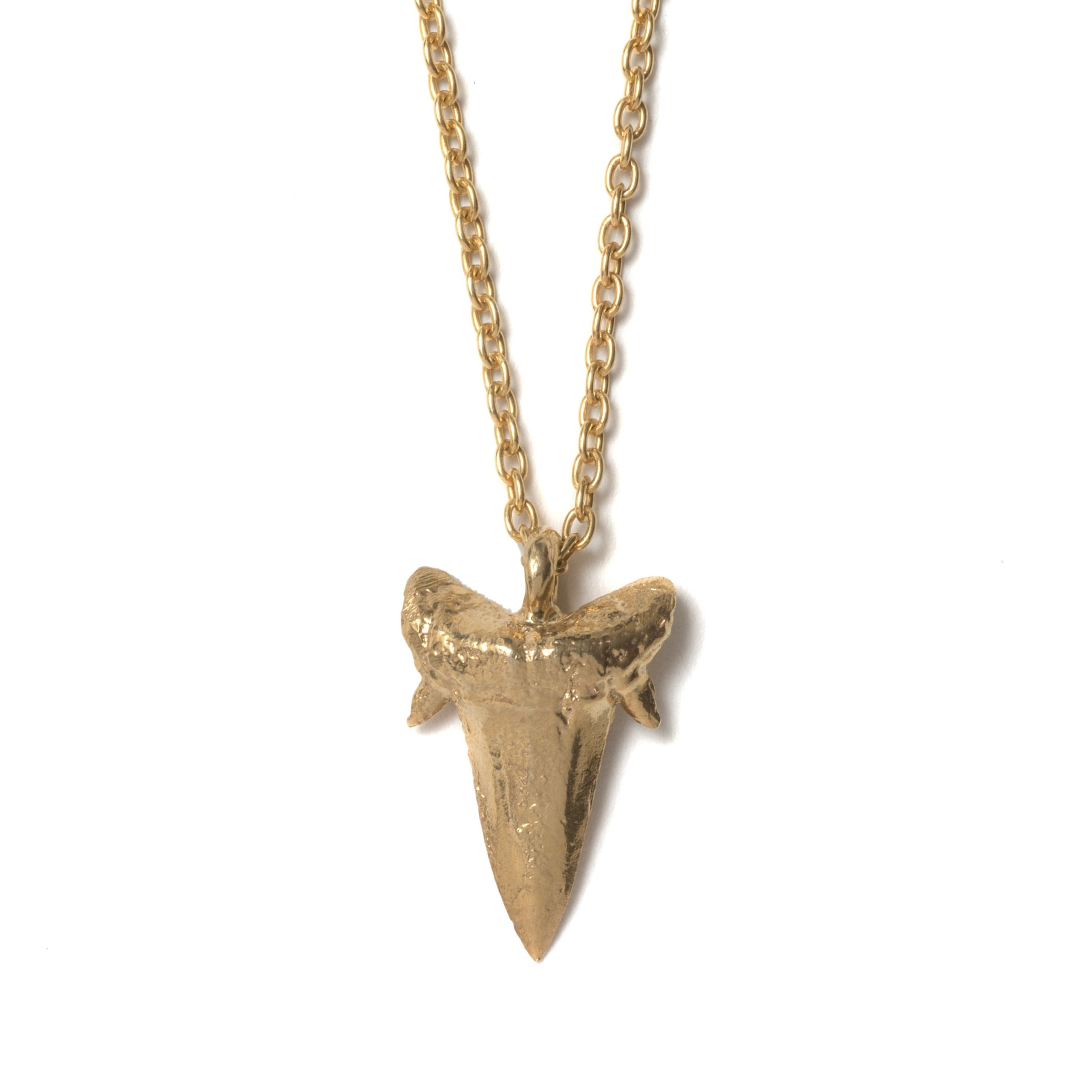 Small Sharks Tooth Necklace (Gold Plated)