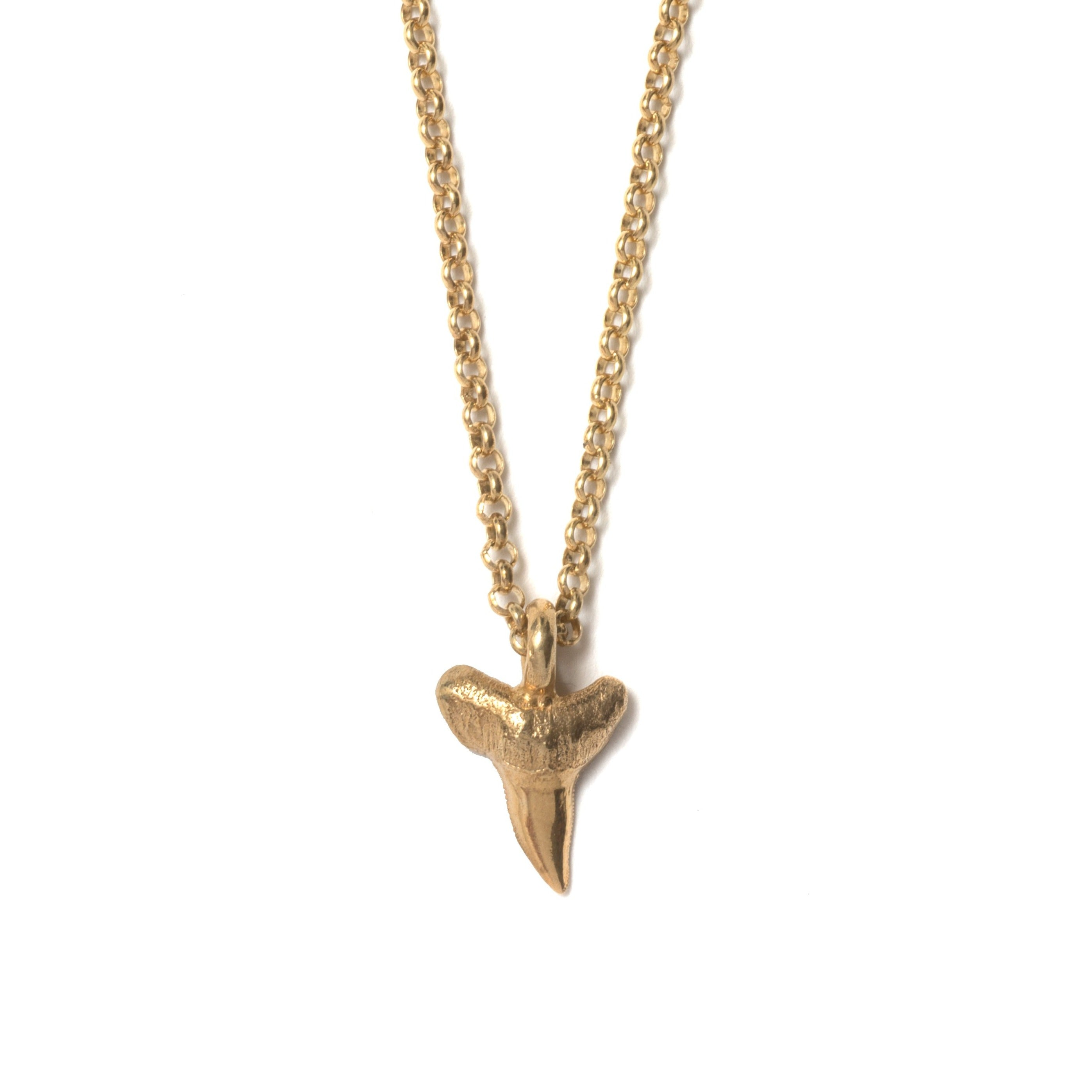 Tiny sharks tooth necklace ~ Gold