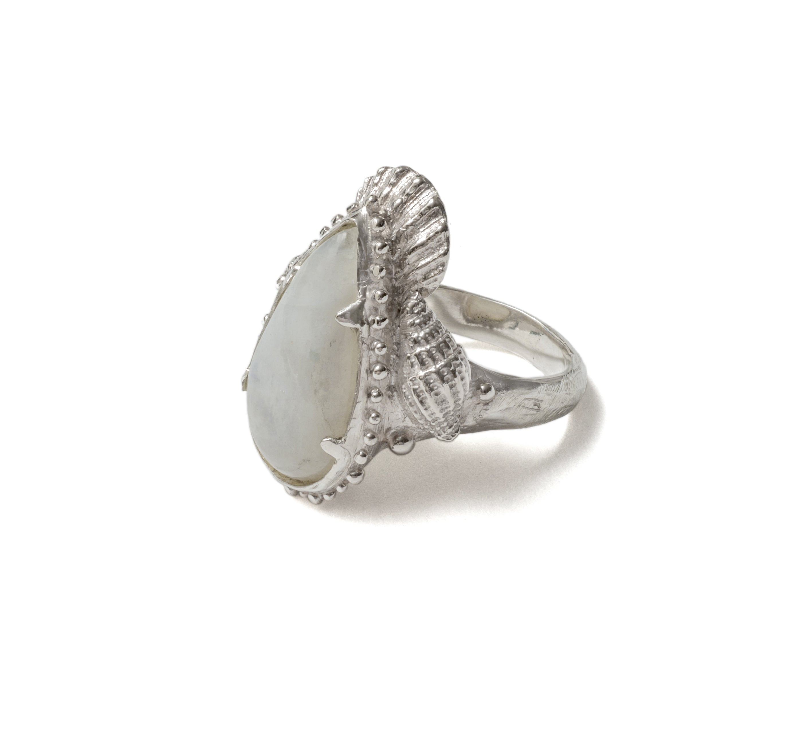 (SALE) Shell moon drop ring