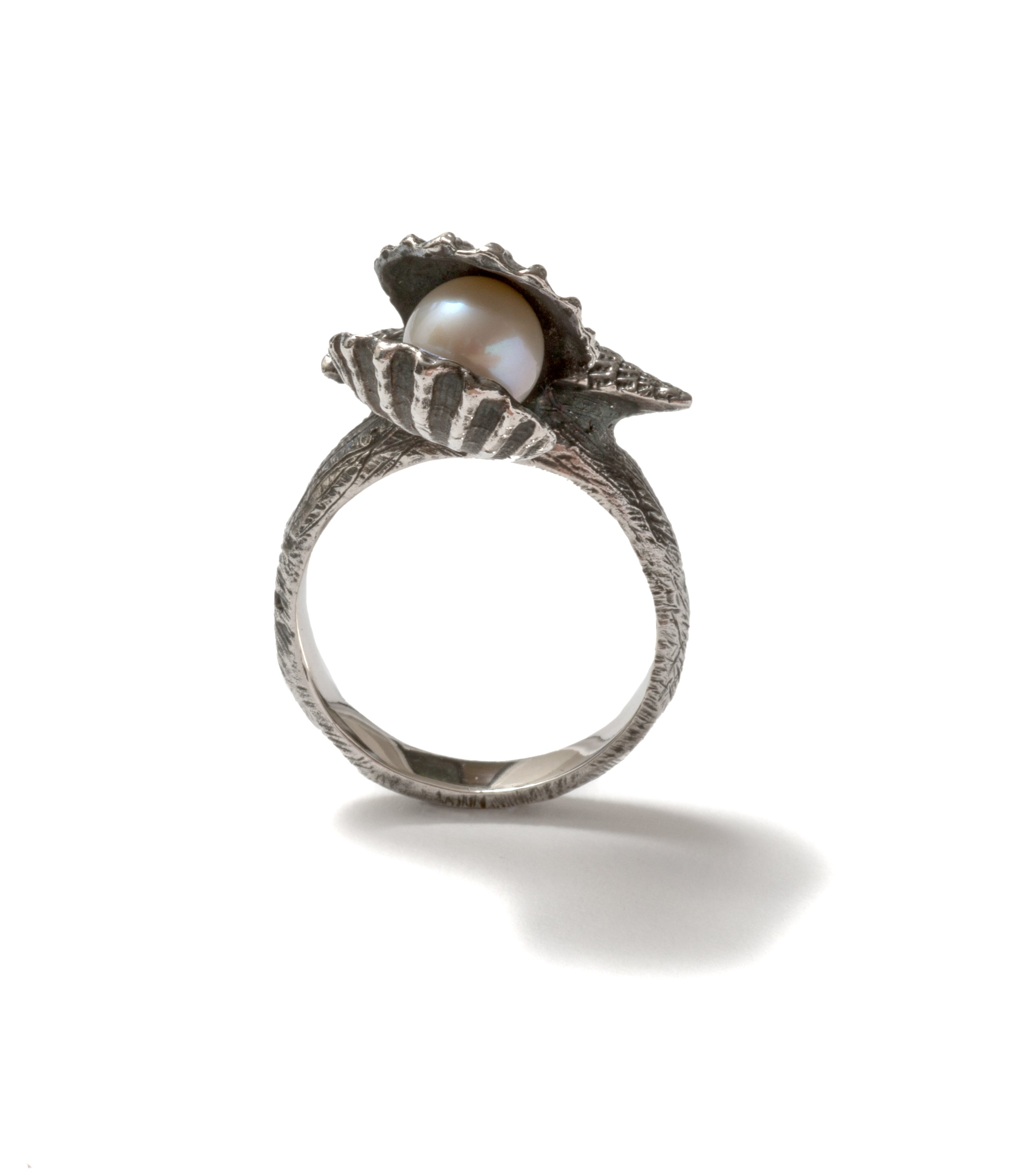 (SALE) Clam shell pearl ring ~ (blackened silver)