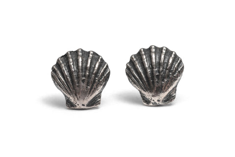 Pecten nobilis shell earrings ~ (Blackened silver)