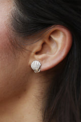 Clam shell earrings ~ (polished silver)