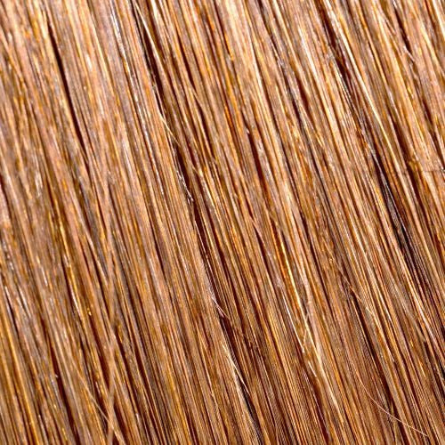 "TAPE Remy Hair Extensions  2.5G  20"" #10 Light Brown"