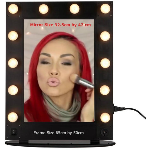 Make Up Mirror Professional Illuminated