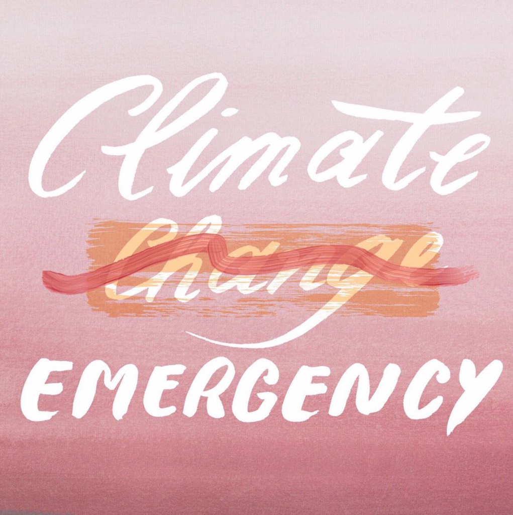 It's A Climate Emergency: what do we do now?