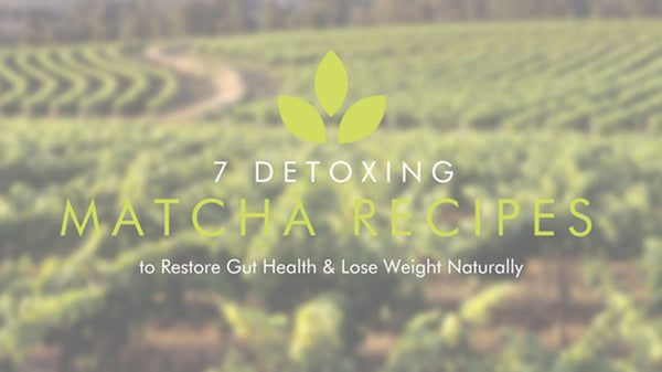 7 Detoxing Matcha Recipes to Restore Gut Health & Lose Weight Naturally