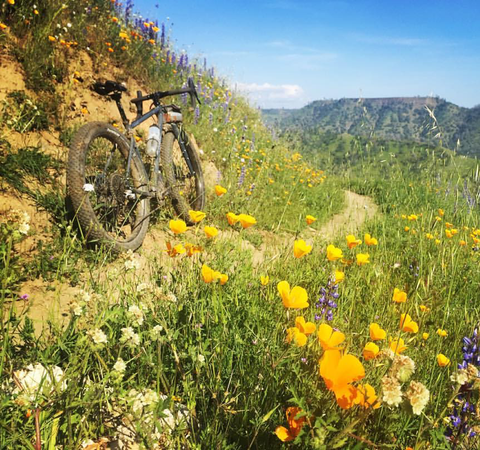 Ulv bike on flowery mountain road