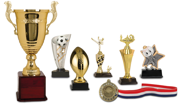 custom trophy, sport award, academic award, school award, trophies, little league award, sports awards