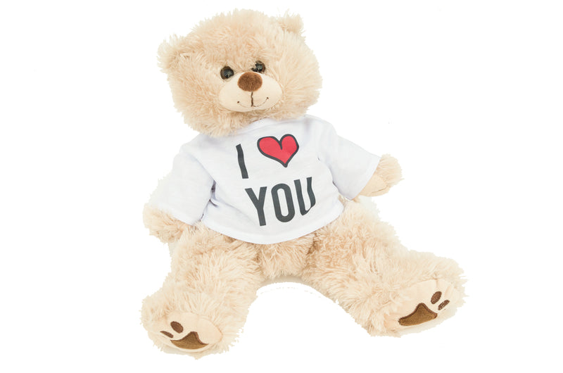 Personalized Photo Teddy Bear, Valentines Day Gift for Her or Him, Girlfriend/Boyfriend Birthday & Anniversary