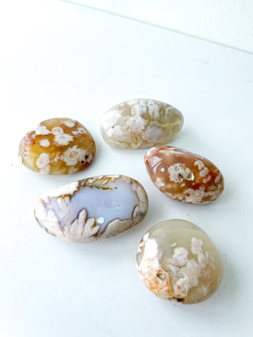 Flower Agate Pebbles