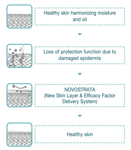 NOVOSTRATA Premium Toner - SERAZENA by Jungbrunnen - Fountain of Youth GmbH