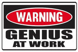 Funny Warning Genius At Work Vinyl Sticker Decal Full Color/Weather Proof.