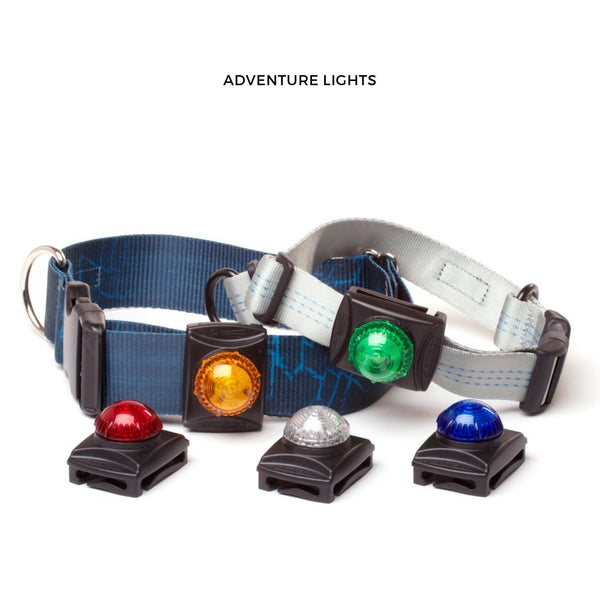 Adventure Lights - LED Dog Lights For Night Manoeuvres