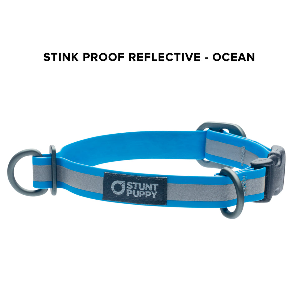 Stink Proof Reflective Collars