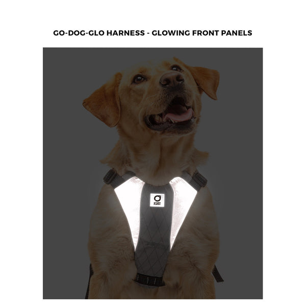 Harness - Stunt Puppy Go-Dog-Glo