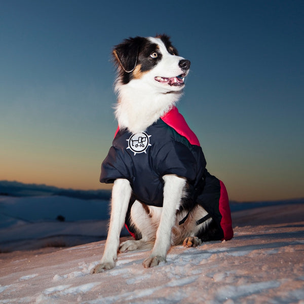 Puff-Doggy - Super Insulating Hybrid Jacket