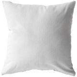 Pillow and Pillow Insert
