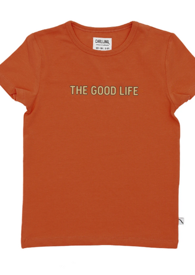 harvestclub-harvest-club-leuven-carlijnq-t-shirt-with-print-the-good-life-rust