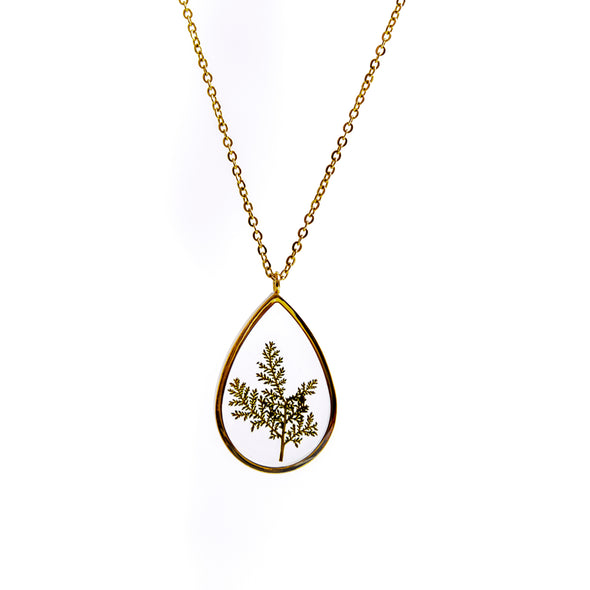 GROWING CONCEPTS Gold Necklace • Fern