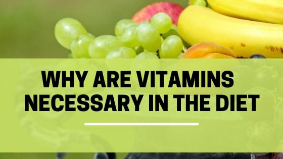 why vitamins are necessary in the diet