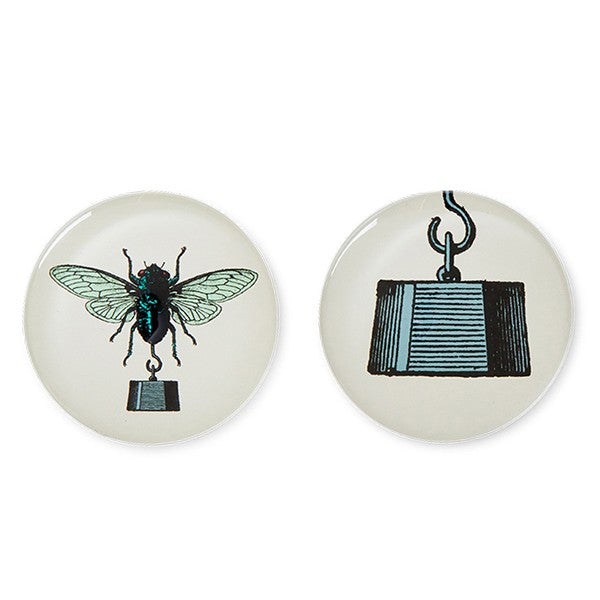 set of two fly magnets