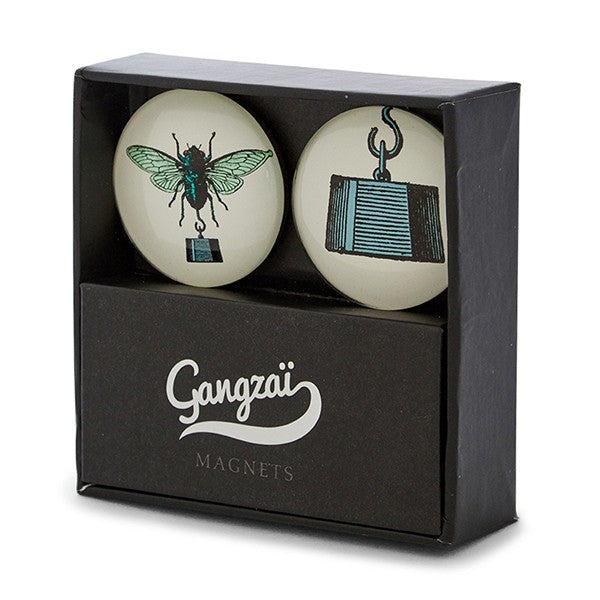 set of two fly magnets in protective box