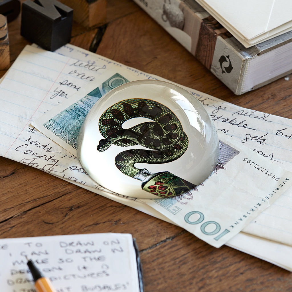 Snake glass paperweight lifestyle