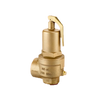 High Lift Safety Valve 3.7 bar DN 25