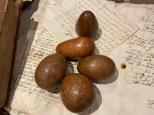 Group of 5 sculptural wooden eggs