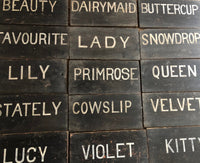 Collection of early 20th century dairy herd name boards from a Flintshire dairy farm