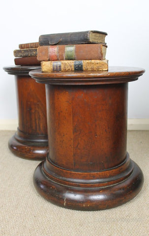 Excellent pair of 19th c Scottish plinths
