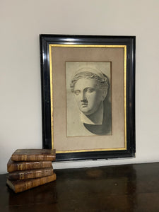 19th century study of a  marble bust in graphite, examined South Kensington
