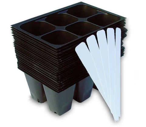 Seedling Starter Trays, 144 Cells & 5 Plant Labels