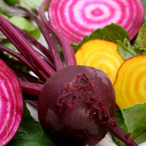 Beets - Gourmet Mix (Chioggia Red & Detroit Yellow) (100 seeds)