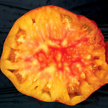 Pineapple Heirloom Tomato Seeds (30 seeds)