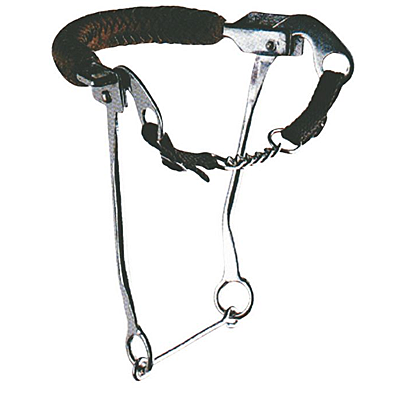 hackamore with leather noseband