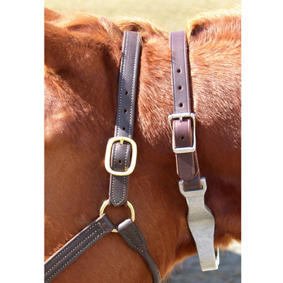 Leather Crown Nutcracker Cribbing Strap 212812