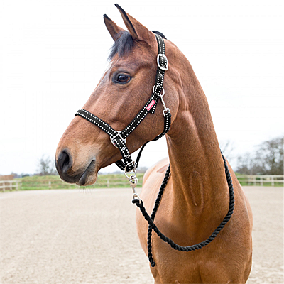 Horze Cooper Halter and Lead Set